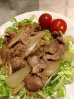 Pork_jinger_spring_cabbage_2