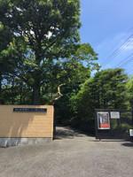 Sada_museum_yoshizawa_lonf