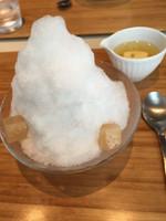 Toraya_tokyo_ginger_ice_before