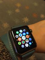 Apple_watch_application