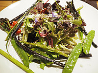 Kyoto_germer_salad